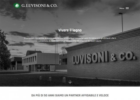 Luvisoni